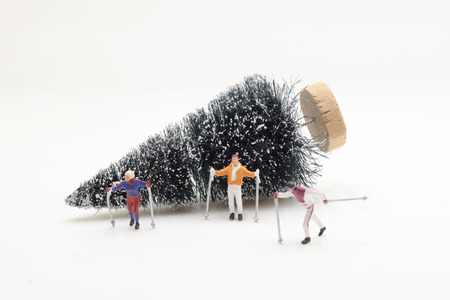 the fun of a figure are skiing