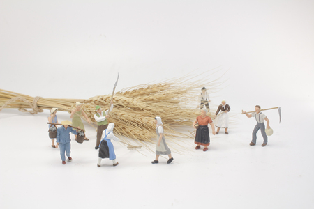 the mini of figure with the hay