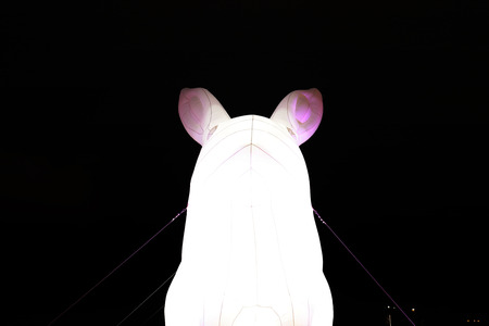 Chinese lanterns light up to celebrate mid autumn