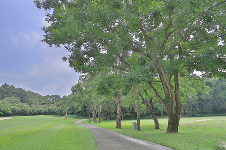 a Green park path way at golf park