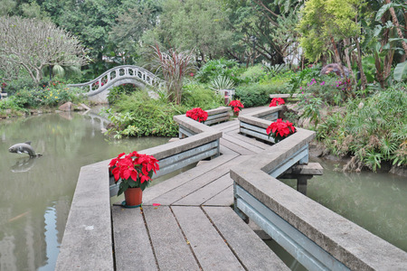 Park in the New Territories sha tin