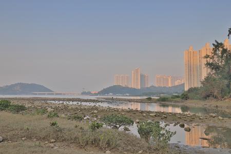 the landscape of wetland at Tung Chung river 版權商用圖片
