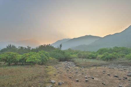 the landscape of wetland at Tung Chung river Banco de Imagens