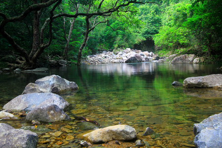 Reservoir and forest at Shing Mun Reservoir 스톡 콘텐츠