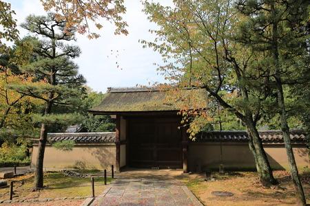 area of Tofukuji Temple , kyoto Redakční