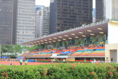 green plant at stadium