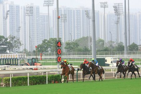 a Horse Racing. At Shatin , Hong Kong 12 Oct 2008  Stock Photo