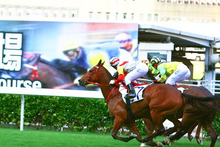 The Horse Racing at Hong Kong Jockey Club. 19 Oct 2008