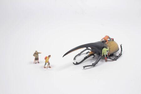 the fun od mini figure world with the weevil