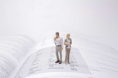 the mini figure stand on the open book