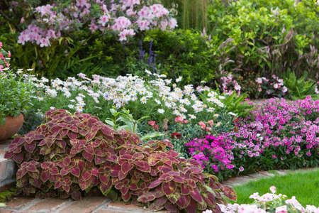 multicolored flowerbed on a lawn, Beautiful spring garden