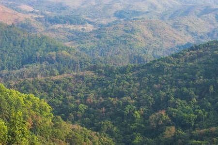 a nature view at Pat Sin Leng Country Park