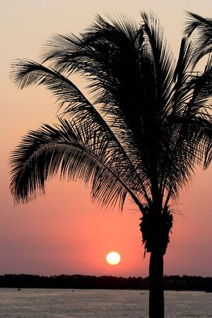 Tropical Sunset In Mexico photo