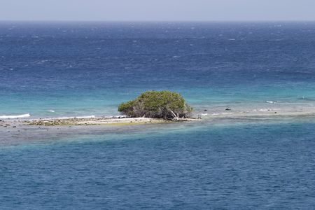 A desert island formed on a coral reef in the Caribbean. The single scrub bush will not provide much shelter from the sun.