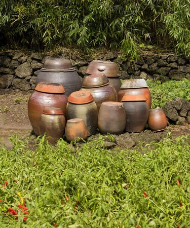 A group of traditional clay pots are waiting and ready to be filled with kimchi to age. The red hot chili peppers in the foreground are a key ingredient.