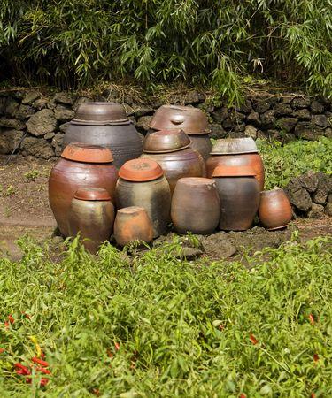 ollas de barro: Un grupo de ollas de arcilla tradicionales est�n a la espera y listo para ser llenado con kimchi a la edad. La Red Hot Chili Peppers en el primer plano son un ingrediente clave. Foto de archivo