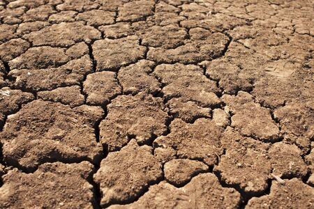 A pattern of cracks emerges in parched soil during the dry season on a game preserve in South Africa.