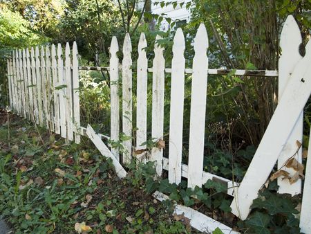 appears: An old white picket fence falling into disrepair as it appears to be agandoned and unmaintained. Stock Photo