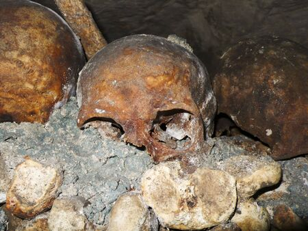 A human school is highlighted against thousands of other bones in the ossuary of the Catacombs under the streets of Paris, France. This skull has yellowed with age relative to the concrete it is set into. Imagens