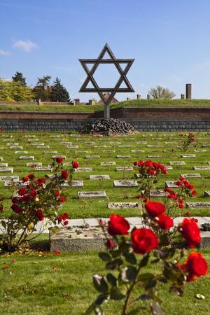 terezin: La memoria ebraica presso il cimitero di Terezin � un ricordo agli ebrei che mor� il campo di prigionia tedeschi di guerra in Cecoslovacchia. Le tombe sono contrassegnate con cespugli di rose.