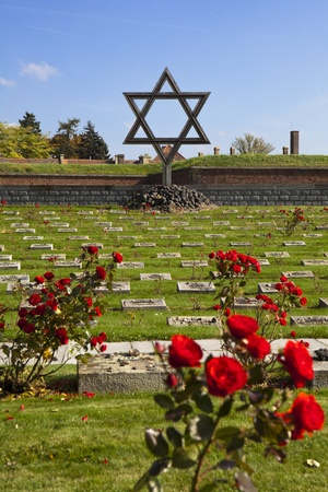 The Jewish Memorial at the Terezin cemetery is a remembrance to the Jews who died at the World War II German prison camp in Czechoslovakia. The graves are marked with rose bushes. Stock Photo