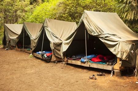 campamento de verano: Una serie de carpas de lona b�sica sobre plataformas de madera carpa en un campamento de Boy Scout proporcionar los fundamentos para la vivienda y no mucho m�s.