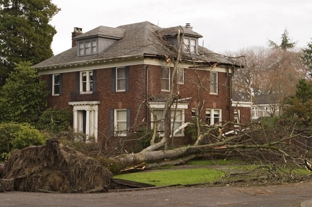 damaged roof: Seattle, Washington, United States - December 15, 2006: In the windstorm of December 2006, this Seattle house was damaged by a large 100 foot elm tree that was uprooted in the high winds of what is referred to as the Hanukkah wind storm.