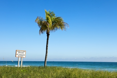 titled: Sign in Miami titled Swim At Your Own Risk, No Lifeguard On Duty with a single palm tree on an otherwise empty beach with the ocean in the distance.