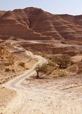 meanders: A winding road meanders through red sandstone hills and valleys in the Negev Desert in Isreal  Stock Photo