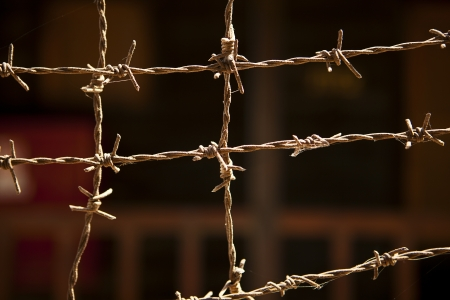 Strands of barbed wire are tied together to form a barrier  In the background, one of the buildings at the British-managed Atlit prison camp in Israel is just barely visible Stock Photo - 16784129