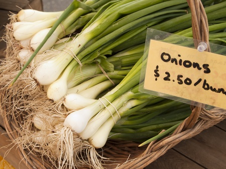 organically: Bunches of organically grown green onions in a basket are for sale at a local farmers market on San Juan Island