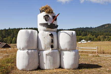 bale: A snowman made of hay bales