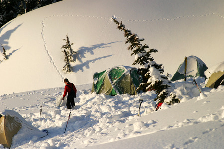 MOUNT RAINIER: Mt  Rainier, United States - March 28, 2004  A group of tents on a winter camping expedition on Mt  Rainier  These tents were partially covered by snow from the evening before  In the background, a small animal has left a set of tracks in the fresh snow