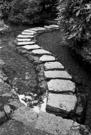 A series of stepping stones over a garden pond create an S-shaped path into the background. (Scanned from black and white film.) Stock Photo