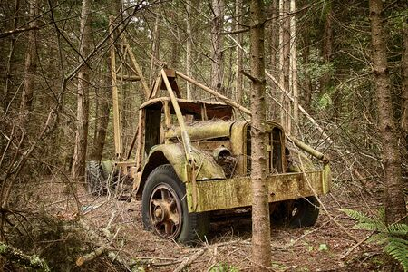 rusting: Waldron Island, USA - May 25, 2014: An environmental view of an old trash hauler truck that is slowly rusting away in a new growth forest.