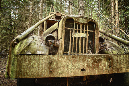hauler: Waldron Island, USA - May 25, 2014: A close-up view from the front of an old, rusted out trash hauler that has been left to decompose in the forest.