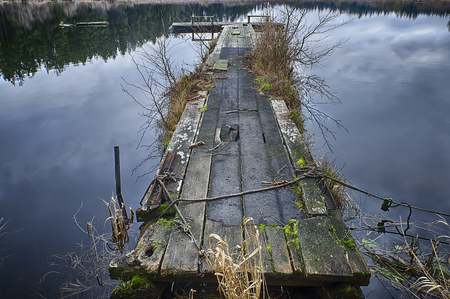 disrepair: An old community wooden dock on Egg Lake on San Juan Island has fallen into disrepair and has become overgrown with reeds and moss growing over the wood planks.