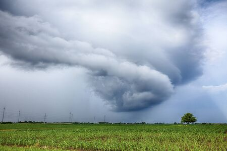 swirling: A swirling storm cloud spins in a circle over a corn field in central Illinois. Stock Photo