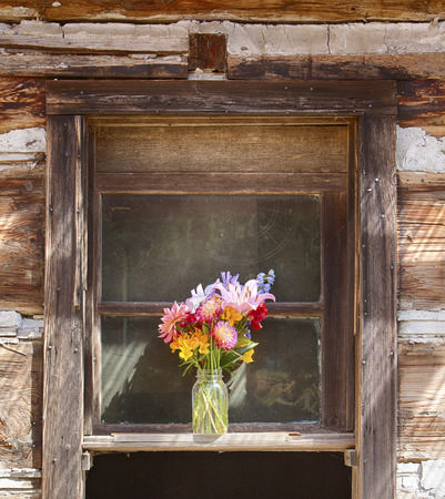 arrangment: A still life of a flower vase is centered in a window on an old pioneer log cabin on Waldron Island in Washington.