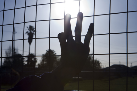 strive for: Reaching for the sun in a South African township a childs hand grasps the wires on a fence as if stretching for freedom. The sunburst is located at the tip of the middle finger.