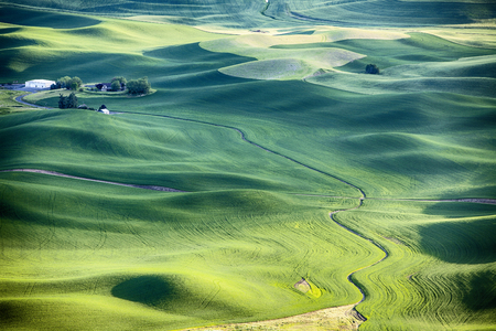 palouse: A streambed flows around the wheat fields and hills of the farmland in the Palouse area of Eastern Washington and leads to a farm house in the upper left. Stock Photo