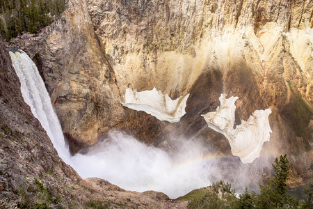 lower yellowstone falls: The waterfall at Lower Yellowstone Falls drops into the gorge of the Grand Canyon of Yellowstone National Park. A rainbow is visible through the mist of the falls. Small snow fields are still hanging on the walls of the canyon in early summer.