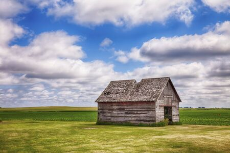 outbuilding: An old shed or similar kind of outbuilding on a farm in central Iowa stands before a field of early corn.
