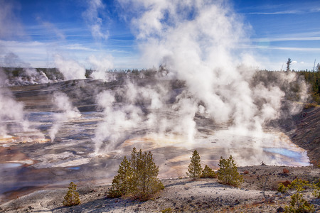vents: In the early morning, steam rises from hundreds of vents on the floor of the Norris Geyser Basin in Yellowston National Park Stock Photo