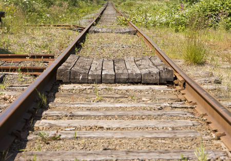 wood railroad: A pair of railroad tracks stretching off in a dtraight line o infinity. This kind of image is symbolic to many linked activities in business duch as receding goals, etc. Stock Photo
