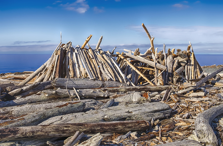 puget sound: A rough beach shelter made out of driftwood and logs resembles a long house on the shores of Puget Sound in Washington State.