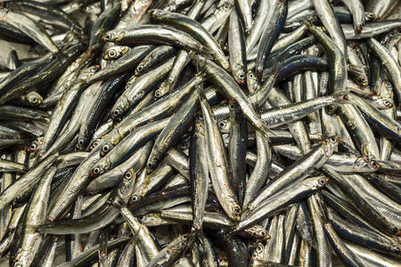 A display of freshly caught sardines at a fish market in a Barcelona boqueria forms a natural background. Stock Photo