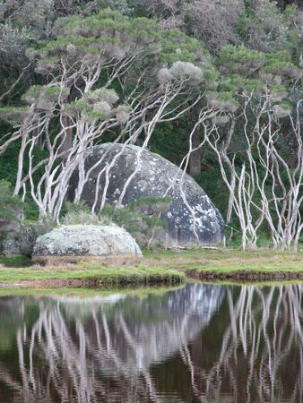 wilsons promontory: river with rock reflection Stock Photo