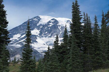 rainier: Mount Rainier summer forest hike