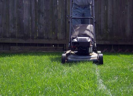 mow: man mowing yard